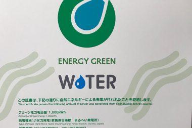 今年もグリーン電力!